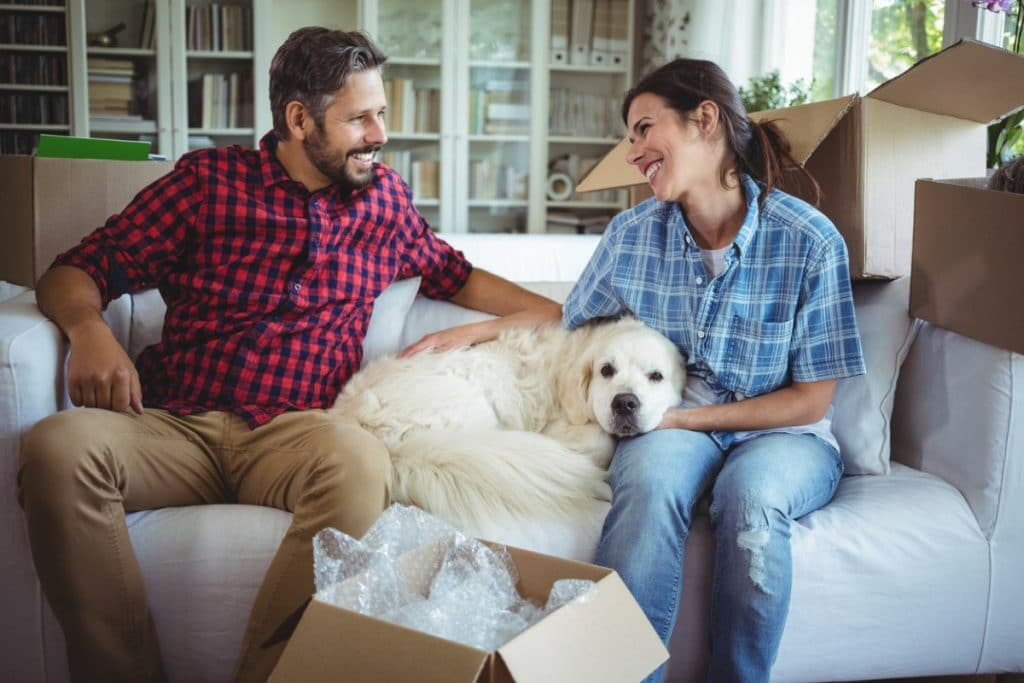 Couple on a couch helping their dog adjust to a new home