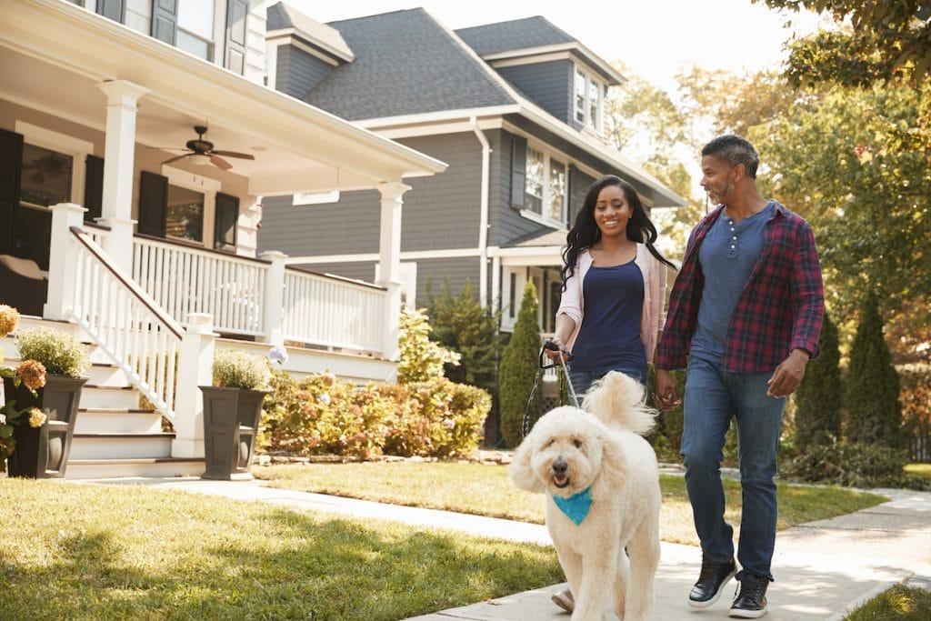 African American couple walking their dog in a suburban neighborhood.